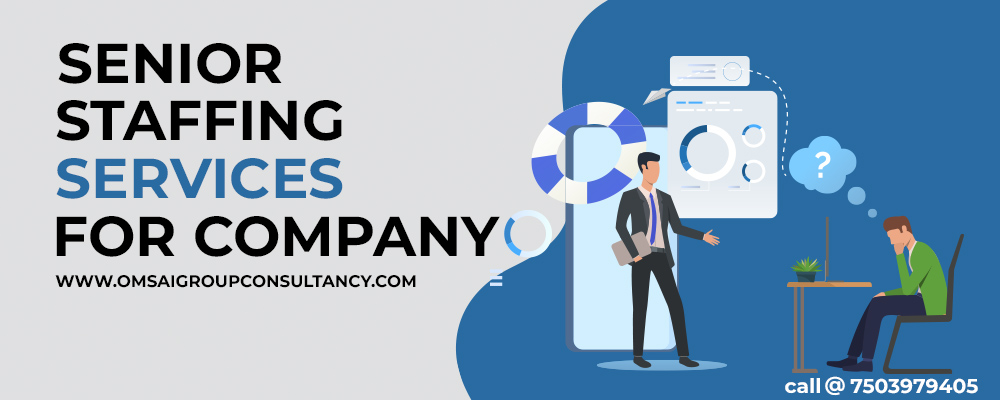 senior staffing services for company